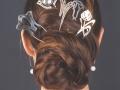Pics à cheveux en argent